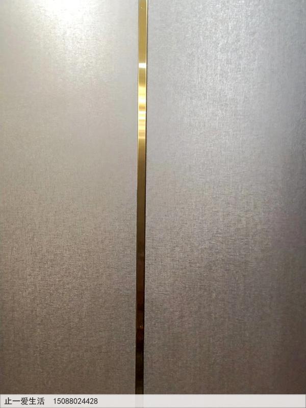 拉丝钛金不锈钢装饰条墙面装饰效果图